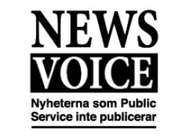 NewsVoice-annons